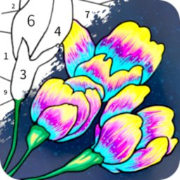 Image of Always Color by Number Adult Paint Colouring Game