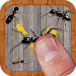 Ant Smasher Free Game Best Fun Free Android App Apk