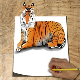 Image of How to Draw Animals 3D