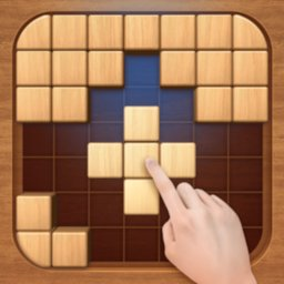 Image of Wood Block Puzzle 3D