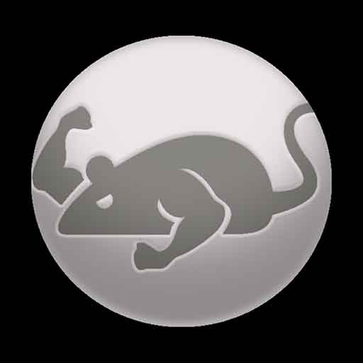 Image of CatMouse