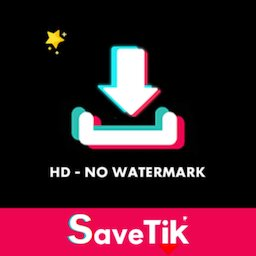 Image of Video Downloader for TikTok