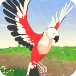 Parrot Simulator icon
