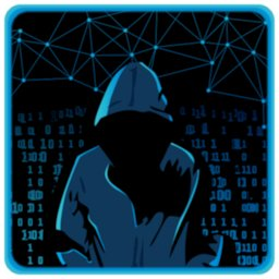 Image of The Lonely Hacker