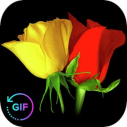 Image of Flowers And Roses Animated Images Gif pictures 4K