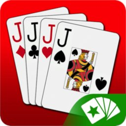 Image of Euchre 3D