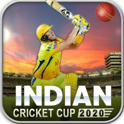 Image of Indian Cricket Premiere League