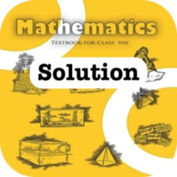 Image of Class 8 Maths NCERT Solution