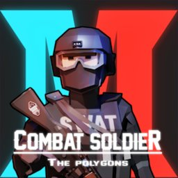 Image of Combat Soldier - The Polygon
