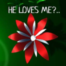 Image of He loves me, He loves me not
