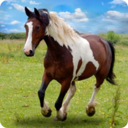 Horse Derby Survival Game: Free Horse Game