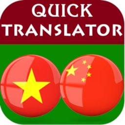 Image of Vietnamese Chinese Translator
