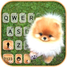 Cute Puppy Pom Keyboard Background