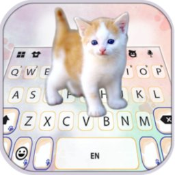 Image of Cutie Kitten Keyboard Background