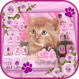 Image of Pink Flower Kitty Keyboard Background