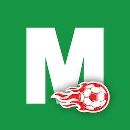 Image of Mirror Football