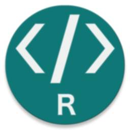 Image of R Programming Compiler
