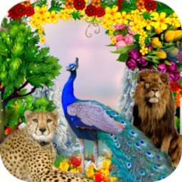 Peacock & Nature Photo Frames icon