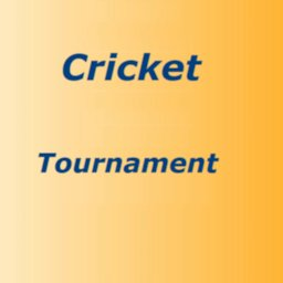 Image of Super Cricket Tournament