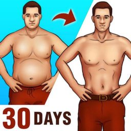 Lose Belly Fat for Men icon