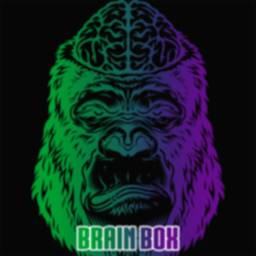 BrainBox - Game