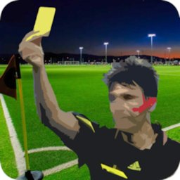 Image of Football Referee