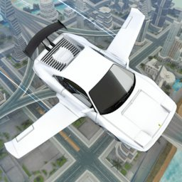 Image of Flying Car Driving 2020