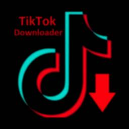 Video Downloader for TikTok