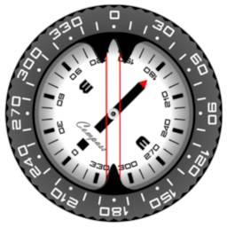 Image of Compass PRO