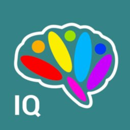 Image of IQ test