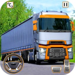 Image of Euro Truck Driver 3D
