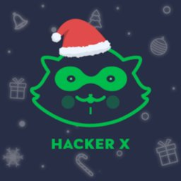 Image of Hacker X