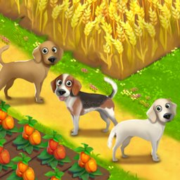 Image of Happy Town Farm