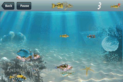 Download hungry fish free for your android phone all for Hungry fish game
