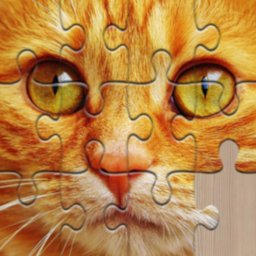 Image of Unlimited Puzzles