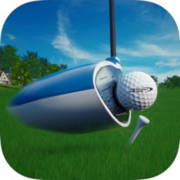 Image of Perfect Swing - Golf