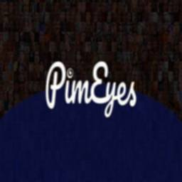Image of PimEyes Face search