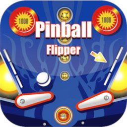 Image of Pinball Flipper Classic 12 in 1