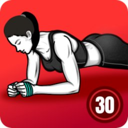 Image of Plank Workout