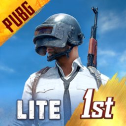 Image of PUBG MOBILE LITE