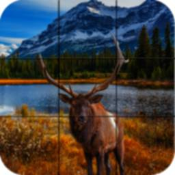 Image of Puzzle - Forest animals