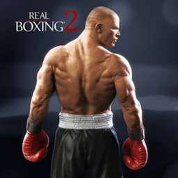 Image of Real Boxing 2