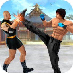 Kung fu fight karate offline games 2020