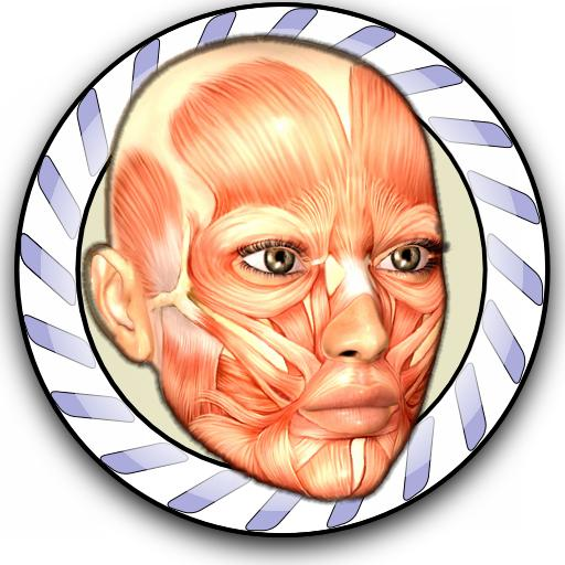 Download anatomy apps for Android