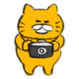 Stray Cats Camera icon