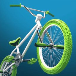 Image of Touchgrind BMX 2