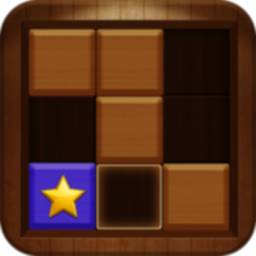 Image of Wood Block Puzzle