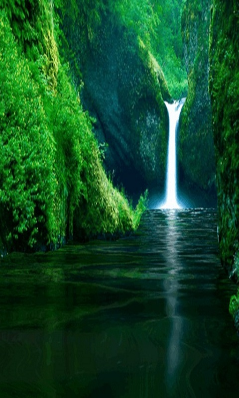 Amazing Waterfall Free Live Wallpaper Android Download