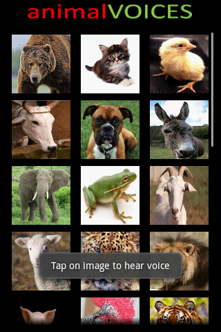 Animal Voices screenshot 2