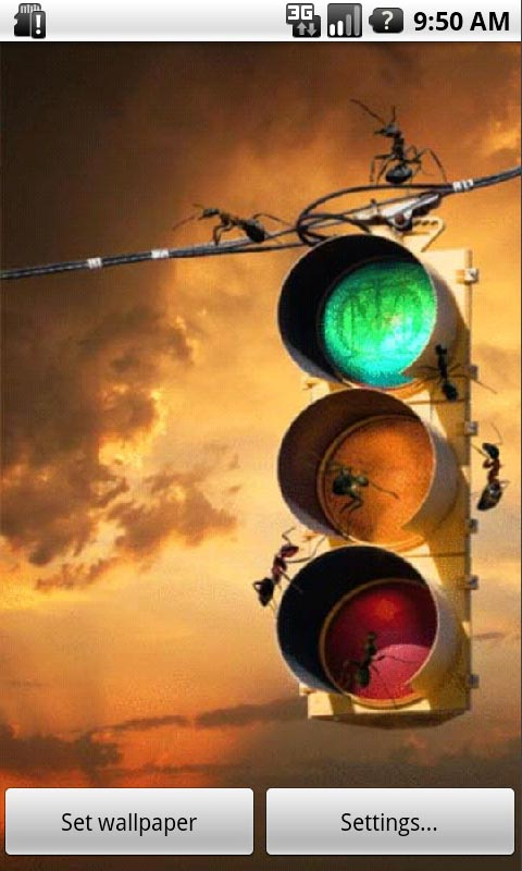 Ant Traffic Lights Live Wallpapers Free Android App